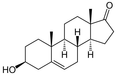 DHEA Test Booster 1.0 main ingredient
