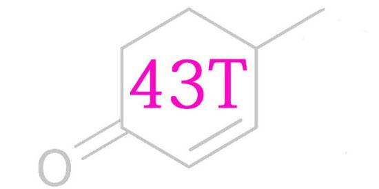 43 Test