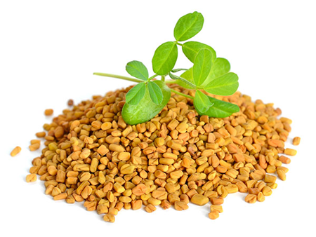 TestoFuel ingredients review Fenugreek Extract